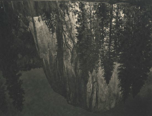 takeshi shikama silent respiration of forest yosemite 13